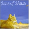 Sons Of Shiva (2002)